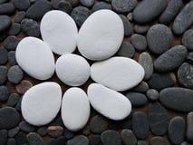 Fleur blanche de pierres naturelles sur les pierres noires Images stock