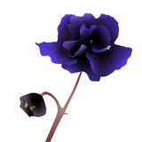 fleur bleue illustration libre de droits