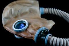 Fleur bleue dans le masque de gaz photo stock