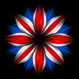 fleur britannique noire d'indicateur de couleurs illustration stock
