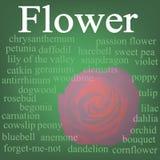 Fleur. Chiffon d'étiquette Photos stock