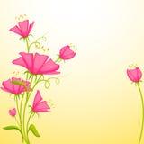 Fleur colorée Photos libres de droits