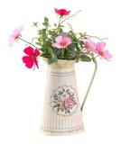 Fleur colorée de cosmo dans le pot de style de vintage Image libre de droits