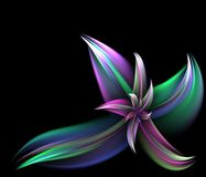 Fleur colorée de fractale Image libre de droits