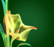 Fleur colorée par abstrait illustration stock