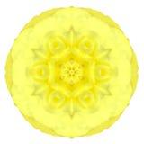 Fleur concentrique jaune d'oeillet d'isolement sur le blanc. Mandala Design illustration de vecteur