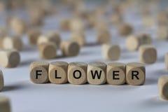 Fleur - cube avec des lettres, signe avec les cubes en bois Image libre de droits