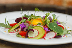 Fleur cuisine. Tartar from the beef with pickled radish, cherry tomatoes and tarragon Royalty Free Stock Photos