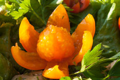 Fleur découpée de la tomate-cerise orange Images libres de droits