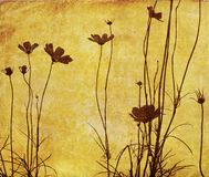 Fleur démodée Photo stock