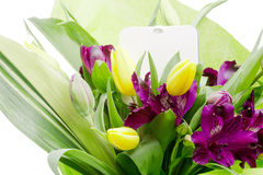 Fleur d'Alstroemeria photos stock