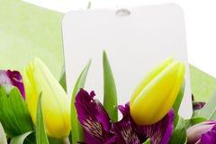 Fleur d'Alstroemeria photo libre de droits