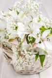 Fleur d'Alstroemeria Images libres de droits