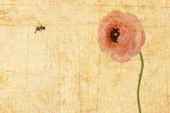 Fleur d'amour de mémoire Photo libre de droits