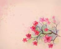 Fleur d'aquarelle Images libres de droits