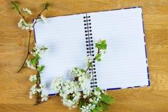 Fleur d'arbre de ressort et carnet vide sur le fond en bois Copiez l'espace Vue supérieure Image libre de droits