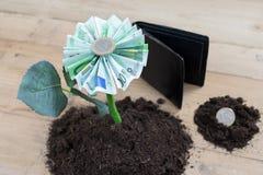 Fleur d'argent avec la pièce et le billet européens d'argent Photographie stock