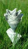 Fleur d'argent dans l'herbe verte Images stock