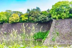 Fleur d'herbe avec le fond impérial brouillé d'endroit images libres de droits
