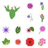 Fleur d'icônes Fleur réglée d'icône Cactus d'icône, Photo stock