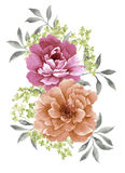 Fleur d'illustration d'aquarelle illustration de vecteur
