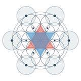 Fleur d'illustration de couleur sacrée de la géométrie de la vie Images libres de droits