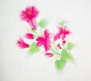 Fleur d'isolement Images stock