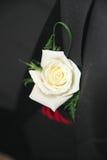 Fleur d'oeillet en trou de bouton Images stock