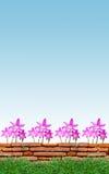 Fleur d'oignon sous le ciel bleu photographie stock