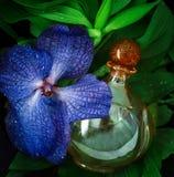 Fleur d'orchidée avec des baisses de l'eau et bouteille de parfum image stock