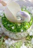 Fleur d'orchidée d'interpréteur de commandes interactif de mollusques et crustacés Images libres de droits