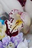 Fleur d'orchidée dans un bouquet Photo libre de droits
