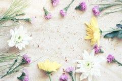 Fleur dans l'espace de copie pour l'usage de fond image libre de droits