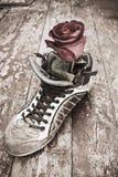 Fleur dans la chaussure Images libres de droits