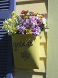 Fleur dans la poche de bidon sur la maison Images stock