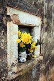 Fleur dans la vieille église - Ston image libre de droits