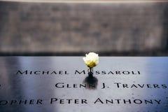 Fleur dans le mémorial national du 11 septembre à New York City Photographie stock libre de droits