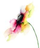 Fleur décorative de Gerber Photo stock