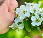 Fleur de baiser de fille sur l'arbre Images libres de droits