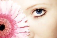 Fleur de beauté Photo stock
