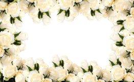 fleur de cadre Image stock