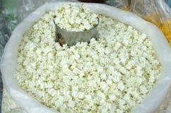 Fleur de Calotropis ou de tête Photos stock
