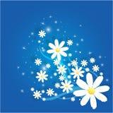Fleur de camomille de Matricaria avec le fond magique d'abtract de paillettes illustration stock