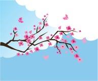 Fleur de cerise illustration de vecteur