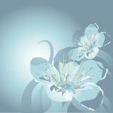 Fleur de cerise abstraite Photographie stock libre de droits