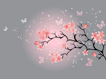 Fleur de cerise, fond gris illustration libre de droits
