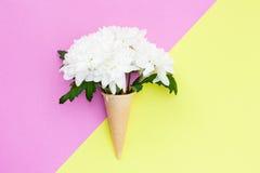 Fleur de chrysanthème dans un cône de gaufre sur un fond rose et jaune Image stock