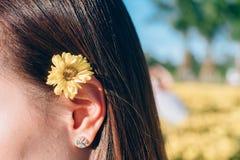 Fleur de chrysanthème de femme sur l'oreille photo libre de droits