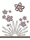 Fleur de clavette Photo stock