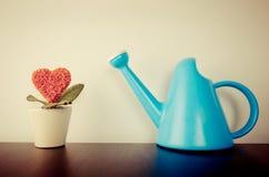Fleur de coeur avec la boîte d'arrosage pour l'amour croissant Images stock